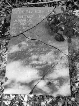 Partizansko groblje u šumi Zdenčina